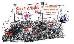 bonne-annee-2017-v2